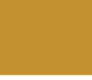Roefie logo